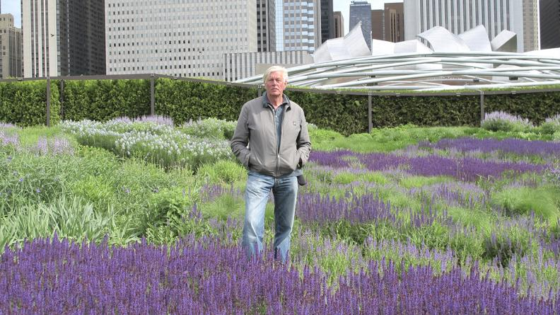 Belle Isle garden by renowned designer Piet Oudolf is a go